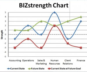Bizstrength Profile